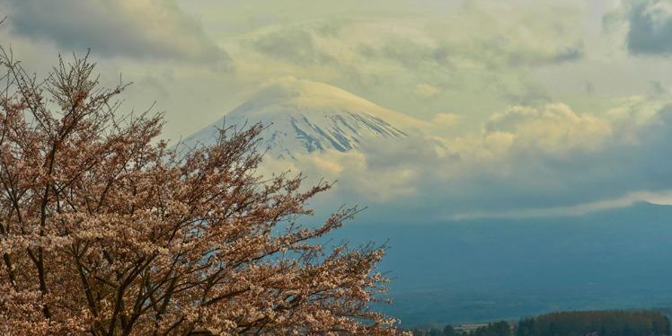 Fuji-3small