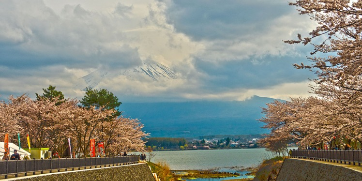 Fuji-small